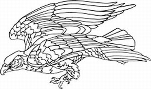 American Eagle decal 2