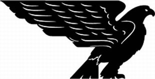 American Eagle decal 4