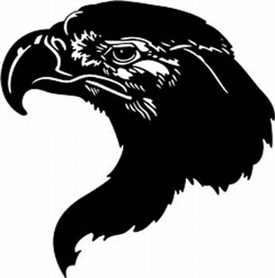 American Eagle decal 8