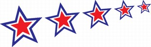 stars and stripes decal 10