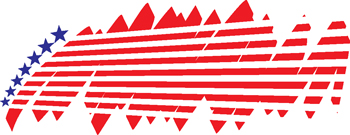 stars and stripes decal 139