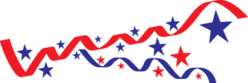 stars and stripes decal 177