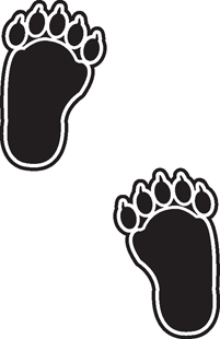 Bear Tracks decal
