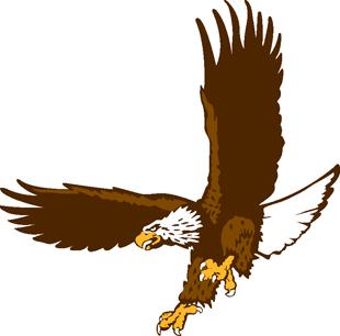 Eagle decal 3