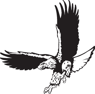 Eagle decal 3a