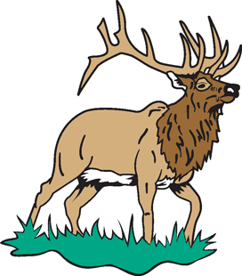 Elk Decal