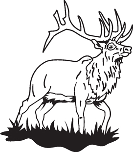 Elk decal 1
