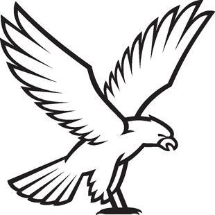 Falcon decal