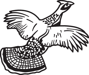Pheasent decal 2