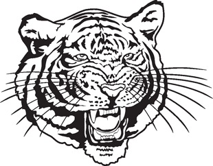 Tiger decal 2