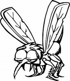 Mosquito decal