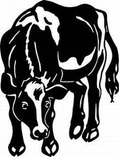 holstein cow decal 4