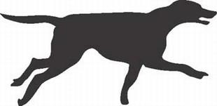 Foxhound Dog Silhouette