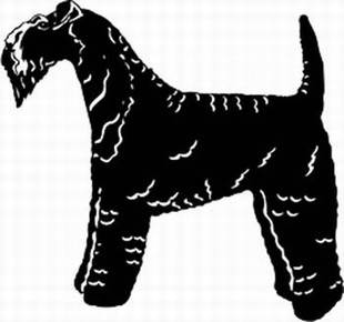 Kerry Blue Terrier Decal