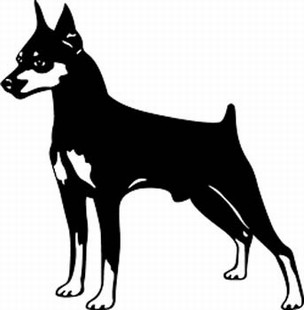 Miniature Pinscher Decal