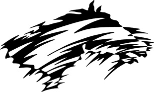 Tribal horse decal 6