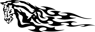 Tribal Flames horse decal 5