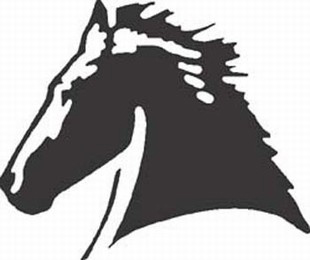 stallion horse decal