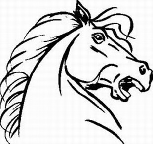 Raging Horse decal
