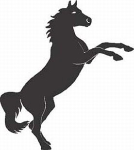 Horse on hind legs horse decal