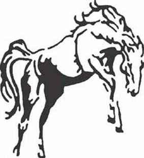 Wild Horse decal 2