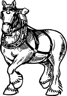 Horse hitch decal