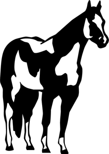 Tovero horse decal