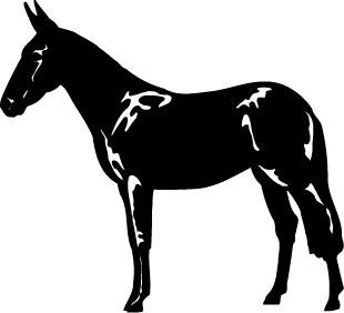 Black Irish Draught horse decal