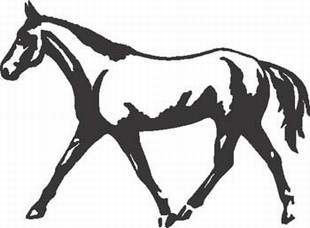 Running horse decal 3