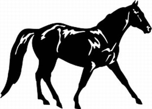 Missouri_fox_trotter horse decal