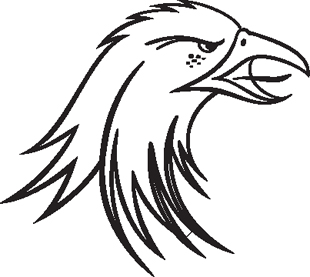 Eagle 10 decal