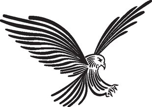 Eagle 18 decal