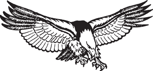 Eagle 21 decal