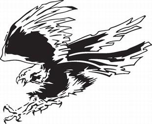 Eagle_10
