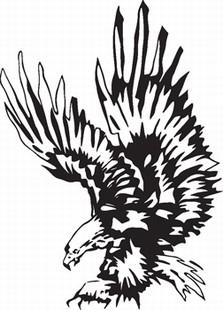 Eagle_8