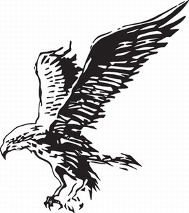 Eagle_9
