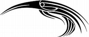Tribal_Birds_22