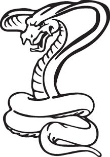 Cobra decal