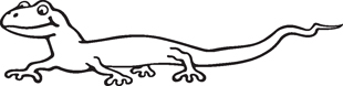 Lizzard decal