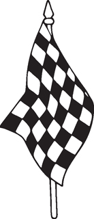 Checkered Flags 21
