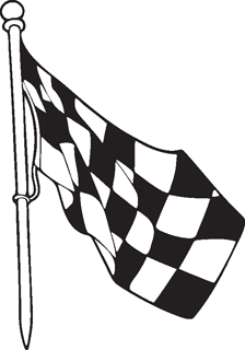 Checkered Flags 25