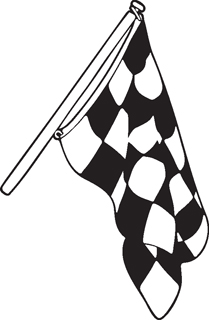 Checkered Flags 29