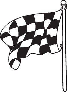 Checkered Flags 30