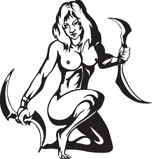 Sexy warrior girl decal 8