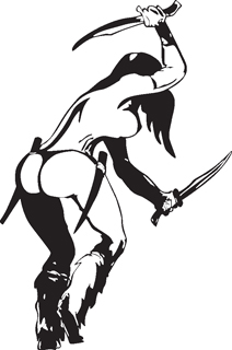 Sexy warrior girl decal 21