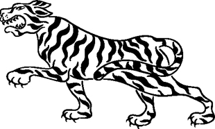 Tigers Dragon 13
