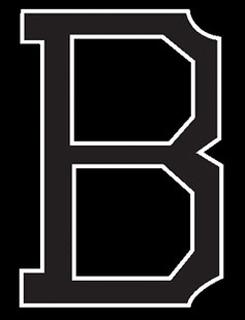 Baltimore Orioles decal 99