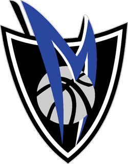 Dallas Mavericks decal 3