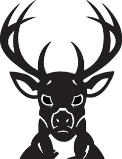 Milwaukee Bucks decal 97