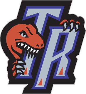 Toronto Raptors decal 92